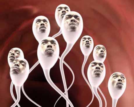 Занимательные сведения о сперме мужчины
