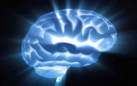 Мозг спит во время бодрствования человека