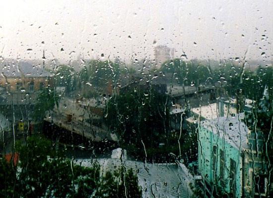 20 фактов о дожде