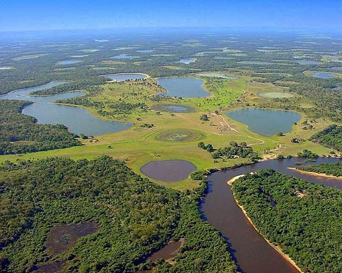 Самое большое болото в мире