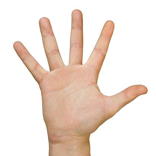 пять пальцев торрент скачать