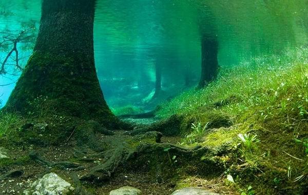 Необычное зеленое озеро