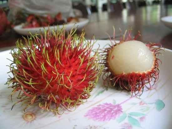 10 ყველაზე ნაკლებად ცნობილი ხილი