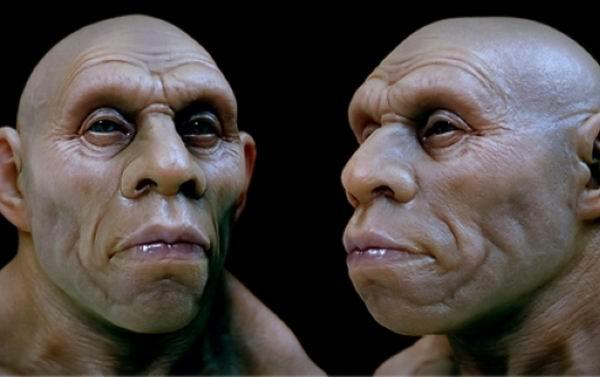 Человек и неандерталец занимались сексом