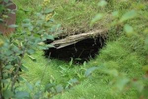 В Новой Шотландии есть таинственные искусственные ямы, и до сих пор неизвестно, что же у них на дне