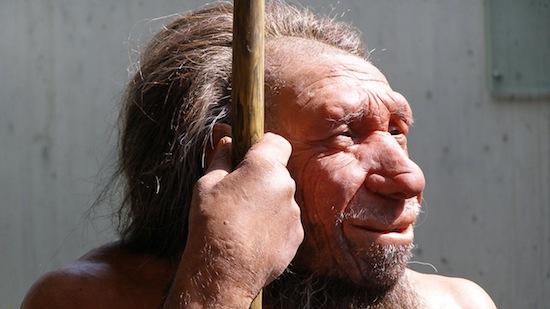 По одной из гипотез, неандертальцы погибли, потому что не могли убивать кроликов