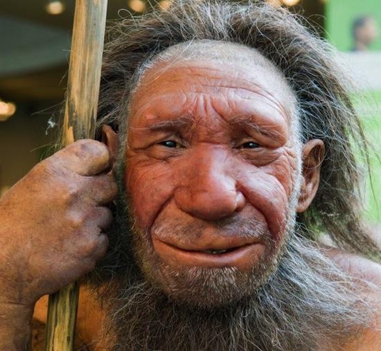 Испанские учёные выдвинули гипотезу, что неандертальцы вымерли, потому что люди съели их
