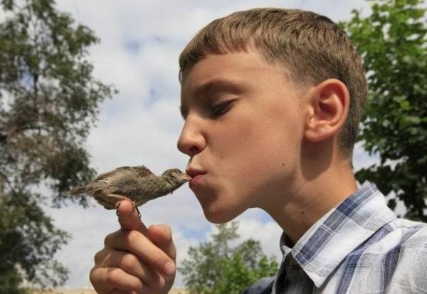 Милосердное отношение людей к животным 1378199675_2