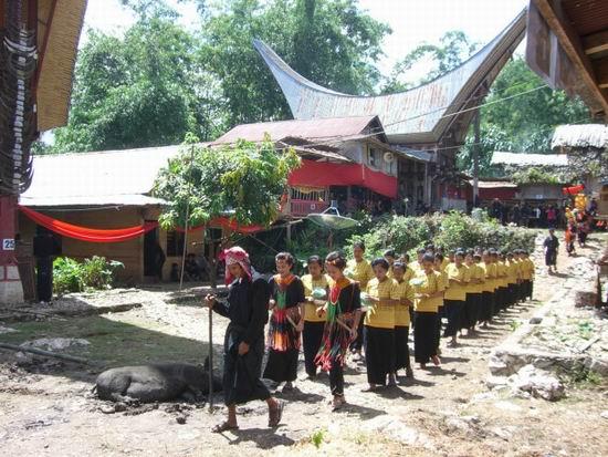 В Индонезии есть обычай раз в несколько лет доставать трупы из гробов, чтобы помыть и переодеть