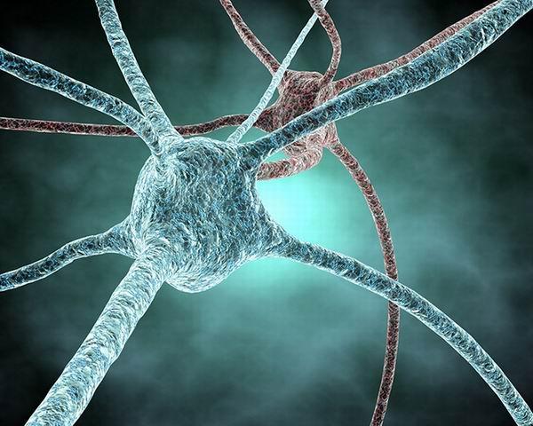 33 факта о том, что происходит у нас в голове